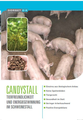 Der von mir getextete DORSET-Folder zur Energiegewinnung im Schweinestall.