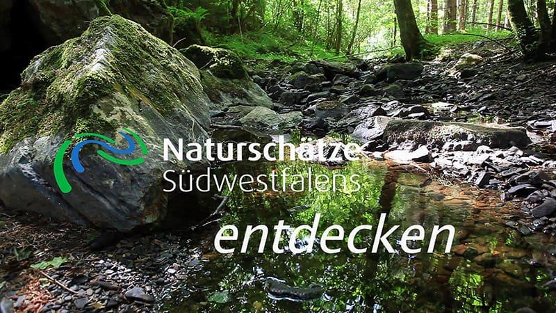 Projektfilm Naturschätze Südwestfalens entdecken - jetzt zu sehen auf YouTube.