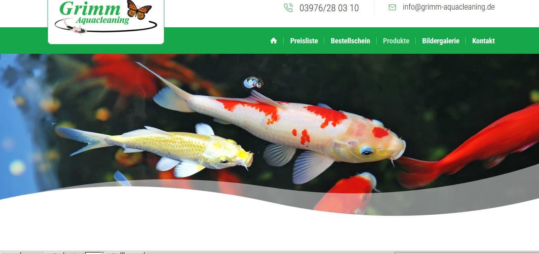 Neue SEO-Webtexte für Grimm-Aquacleaning.de