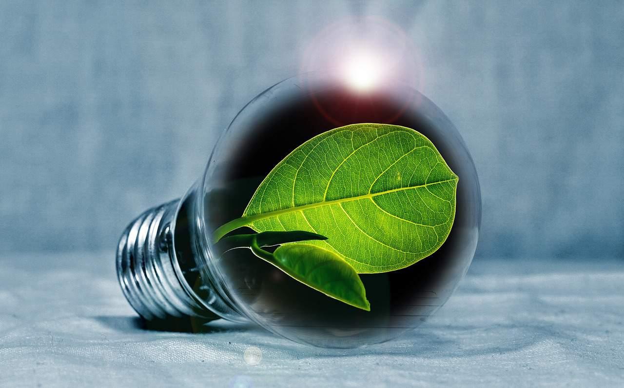 Von der Pflicht zur Kür – Magazinbeitrag zu Energieaudits für Kommunal